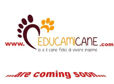 logo educamicane 1